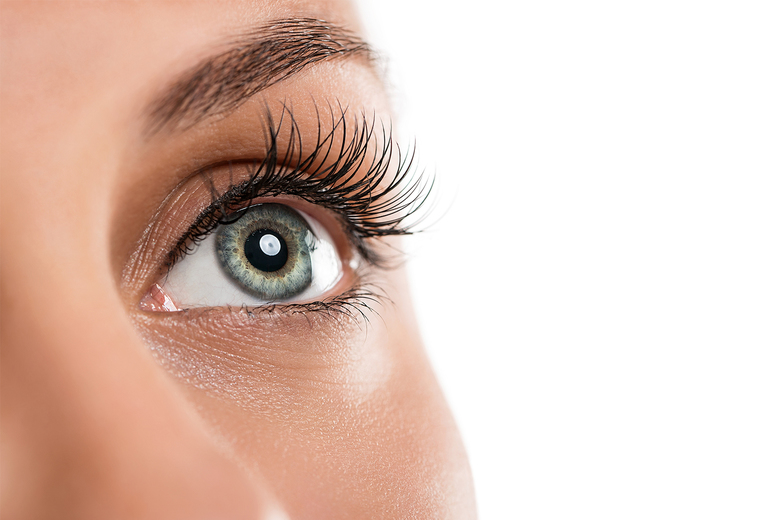 Image of £8 instead of £40 for an online accredited lash lift and tint course from BEKE College - save 80%