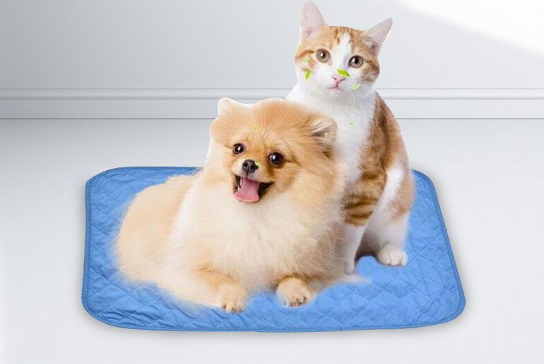 Image of £8.99 for a foldable cooling mat for pets, £9.99 for a medium cooling mat, £10.99 for a large cooling mat - pet cooling mat