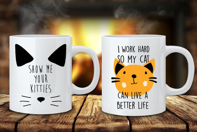 Image of From £4.99 for a novelty cat mug or £8.99 for two from Fab Deco – save up to 62%