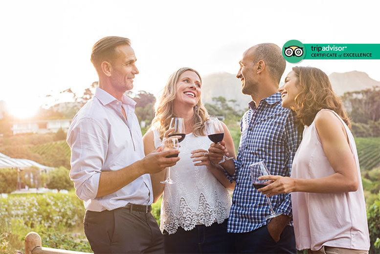 Image of £19 instead of £49.50 for a vineyard tour with tasting and unlimited cream tea for two at Carr Taylor Vineyard, East Sussex. £34 for a group of four - save up to 62%
