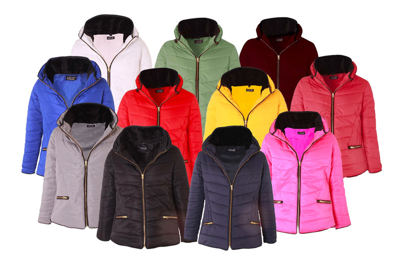 Image of £24.99 for a ladies padded winter coat in your choice of 11 colours in UK sizes 8-14 from Love My Fashions