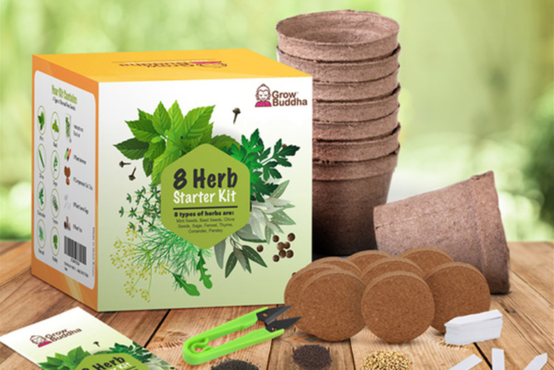 Image of £9.99 instead of £19.99 for a 'Grow Your Own Herbs' kit from Grow Buddha including biodegradable pots, seeds, soil discs, clippers, and instructions manual - save 50%
