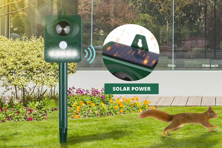 Image of £12 for a solar-powered animal pest repeller with infrared sensor, £19.99 for a repeller with LED lights from CN Hut!