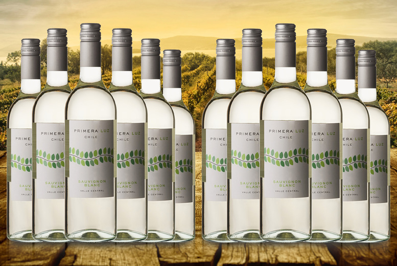 Image of £29.99 instead of £46.50 for six bottles of Primera Luz Chilean white wine or £52.99 for 12 bottles from The Great Wine Co. - save up to 36%