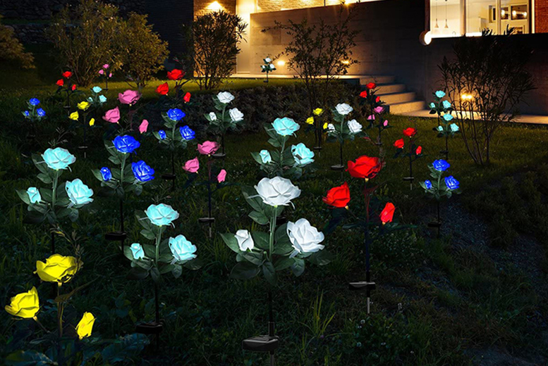 Image of £12.99 instead of £39.99 for one solar power rose light, £22.99 for two or £38.99 for four in red, white, yellow, pink or blue from Forefront Trading!