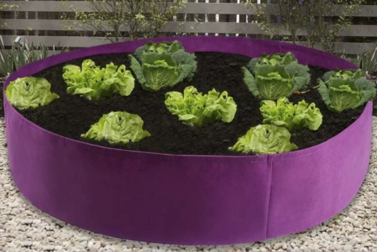 Image of From £7.99 for a Round Planting Container from AC Electronic Limited- Domo Secret - save up to 73%