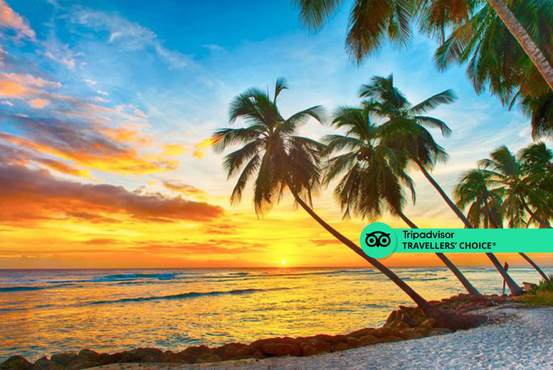 Image of A 4* Barbados hotel stay with breakfast and return flights from four airports. From £1099pp for seven nights, from £1399pp for 10 nights, or from £1859pp for 14 nights - save up to 27%