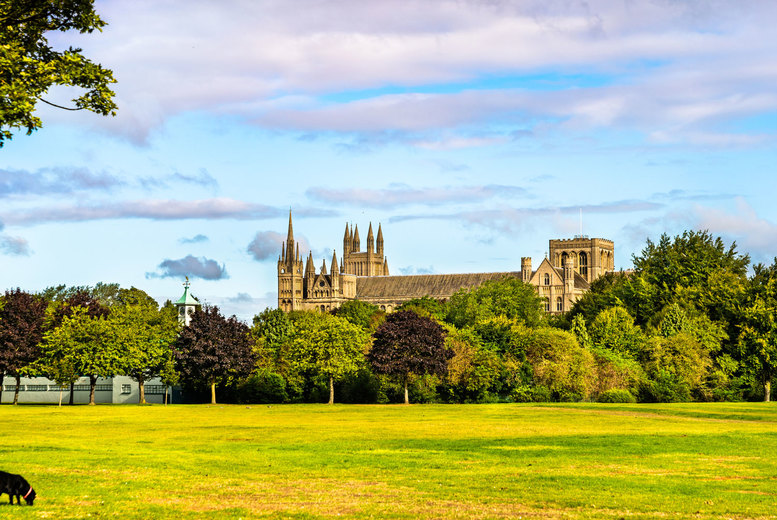 Image of A Peterborough, Cambridgeshire stay at Dragonfly Hotel Peterborough for two people with breakfast. £49 for one night, or £89 for two nights - save up to 46%