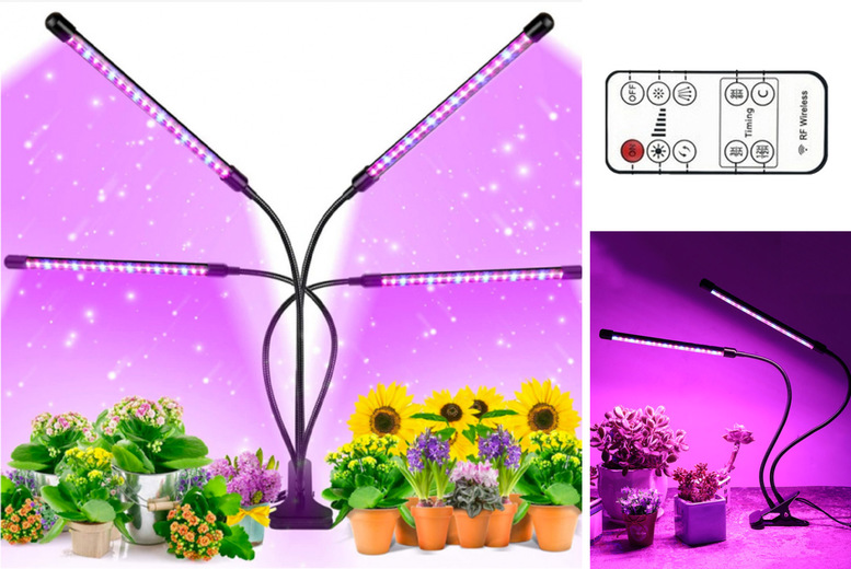 Image of From £12.99 for a grow light for indoor plants from My Brand Logic - choose your quantity!