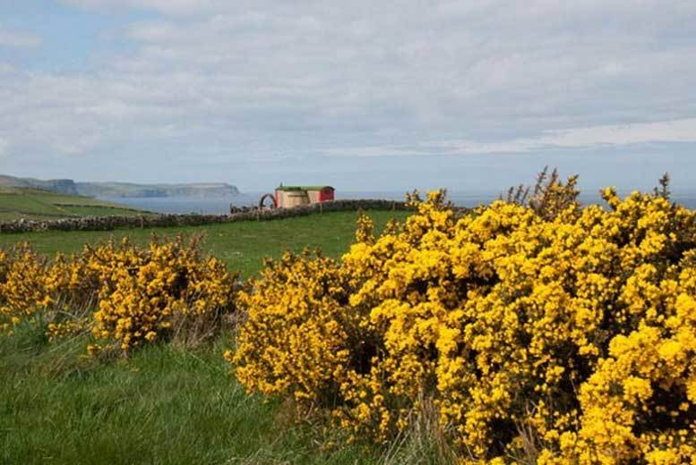 Aberdeenshire Coastal Glamping Stay for 2