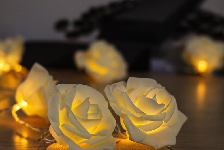 The Best Deal Guide - £3.99 instead of £10.99 for a set of warm white LED rose lights from Ckent Ltd - save 64%