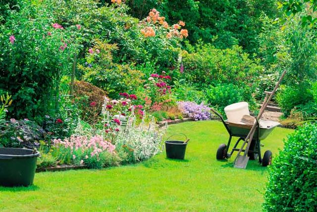 ... Of Professional Garden Maintenance From An Expert Gardener, U20ac49 For  Four Hours, U20ac89 For Eight Hours With The Garden Services Company   Save Up  To 52%