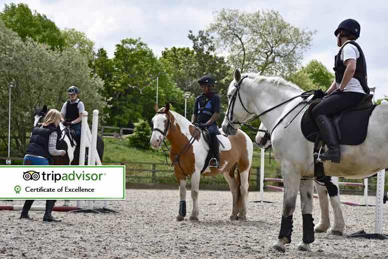 DDDeals - £39 for a three hour horse riding experience suitable for beginners or advanced riders with tea and cake at Trent Park Equestrian Centre, Oakwood - save up to 61%