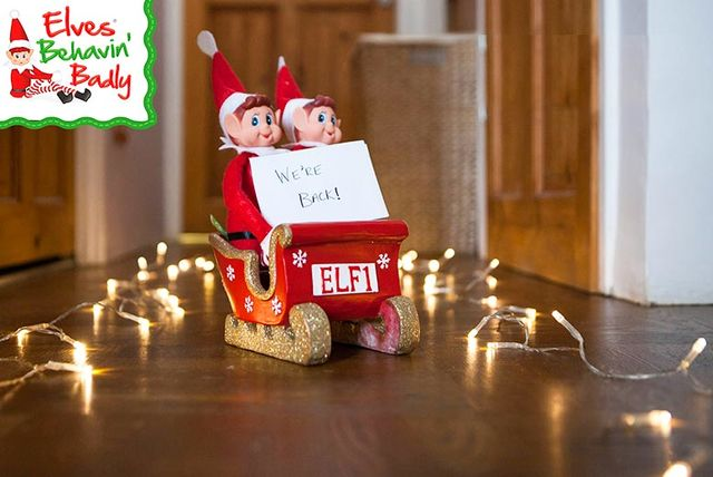 Christmas Cruise Deal