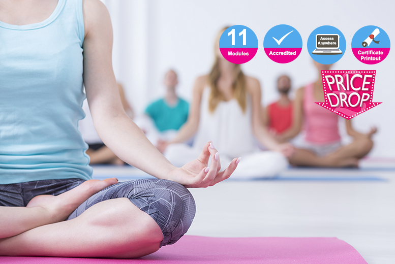 The Best Deal Guide - £19 instead of £299 (from Kew Training) for an accredited professional yoga teacher diploma - save 94%