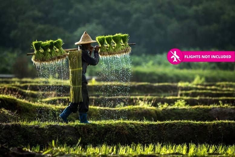 10-Day Vietnam Tour - See Halong Bay, Hanoi, Hoi An & More!