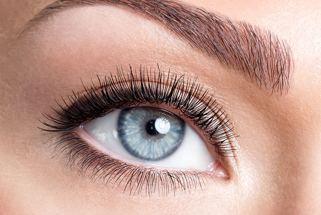 6689c549a5c £19 instead of £40 for an LVL lash volume treatment, £21 to include a lash  tint at Bon Bon Beauty, East Ham – enhance your lashes and save up to 53%